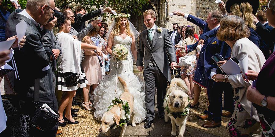 wedding dog photo
